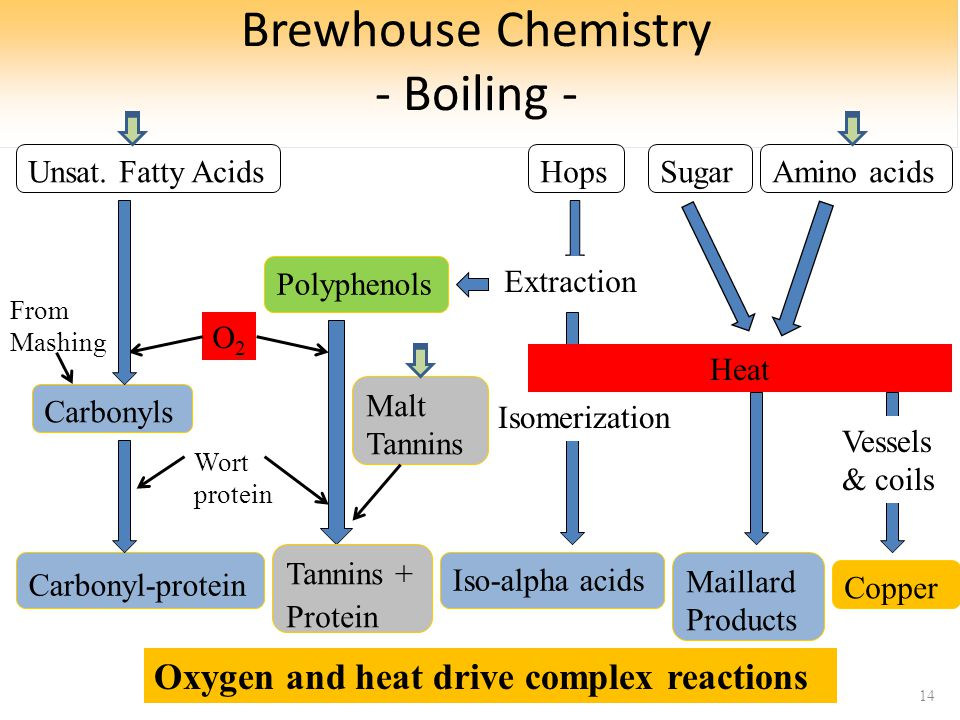 Brewhouse Chemistry - Boiling - 14 Polyphenols Carbonyls O2O2 Iso-alpha acids Extraction Isomerization Tannins + Protein Carbonyl-protein Wort protein From Mashing Maillard Products Unsat.