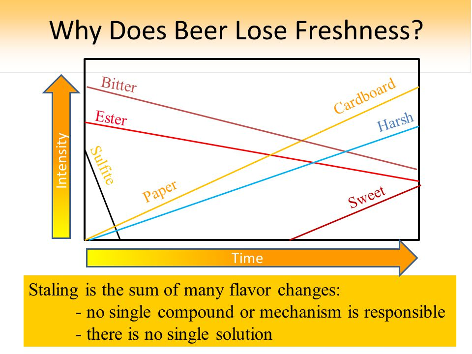 Why Does Beer Lose Freshness.