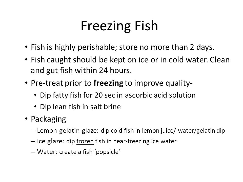Freezing Fish Fish is highly perishable; store no more than 2 days. Fish caught should be kept on ice or in cold water. Clean and gut fish within 24 h