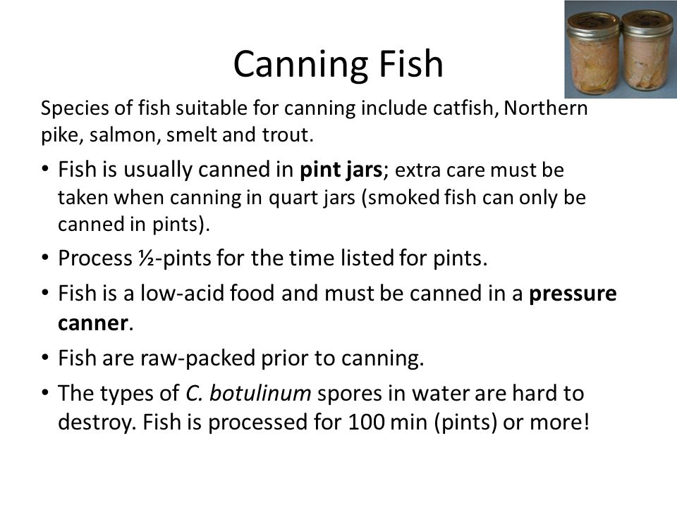 Canning Fish Species of fish suitable for canning include catfish, Northern pike, salmon, smelt and trout. Fish is usually canned in pint jars; extra