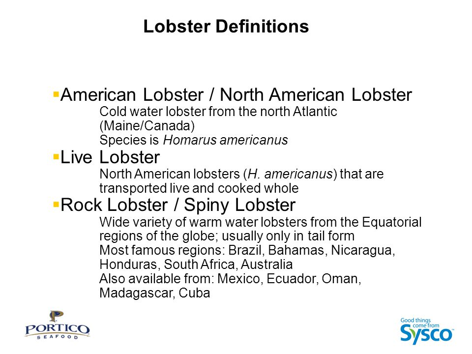 Lobster Definitions  American Lobster / North American Lobster Cold water lobster from the north Atlantic (Maine/Canada) Species is Homarus americanus  Live Lobster North American lobsters (H.