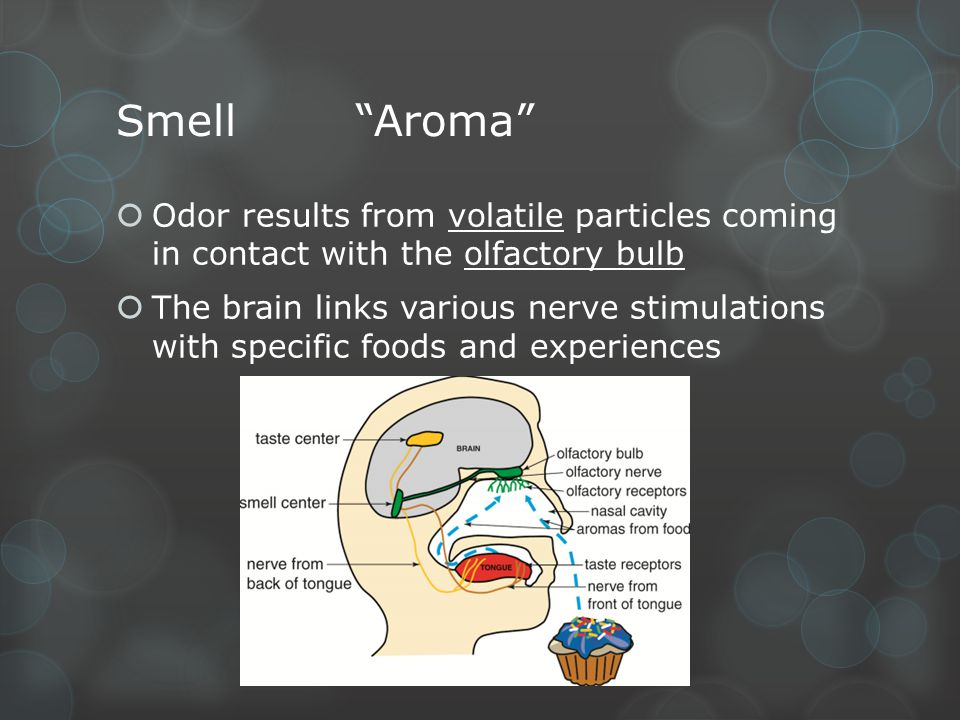 "Smell""Aroma""  Odor results from volatile particles coming in contact with the olfactory bulb  The brain links various nerve stimulations with specif"