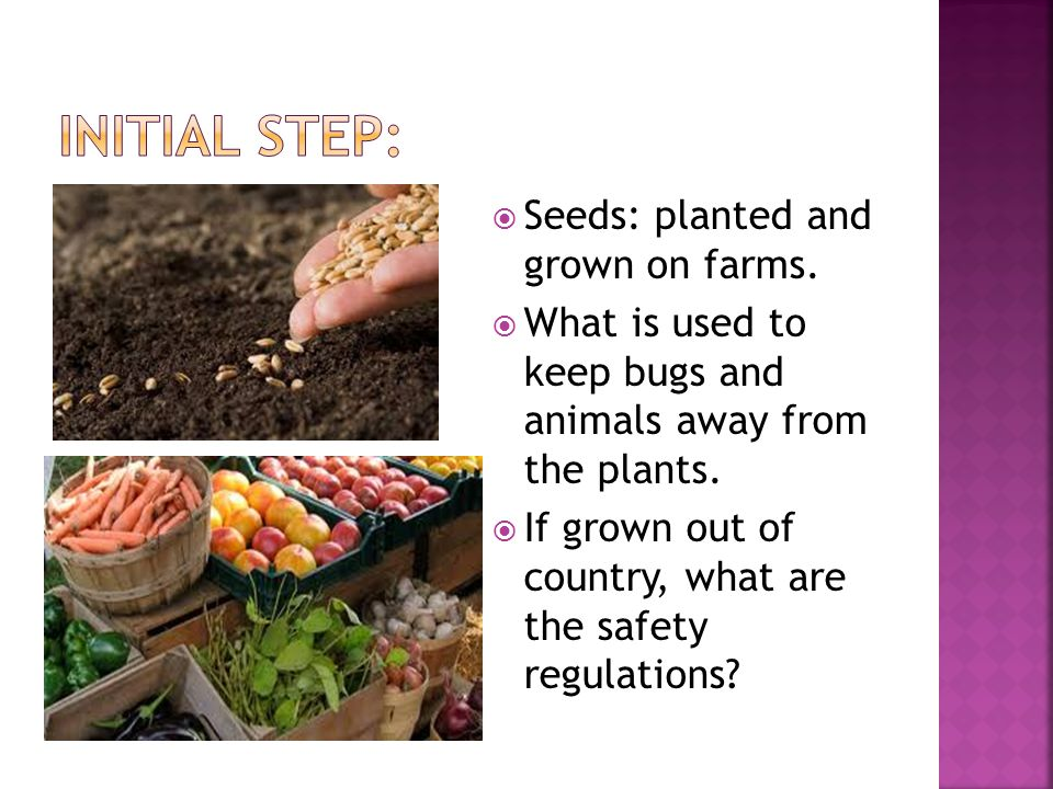  Seeds: planted and grown on farms.  What is used to keep bugs and animals away from the plants.
