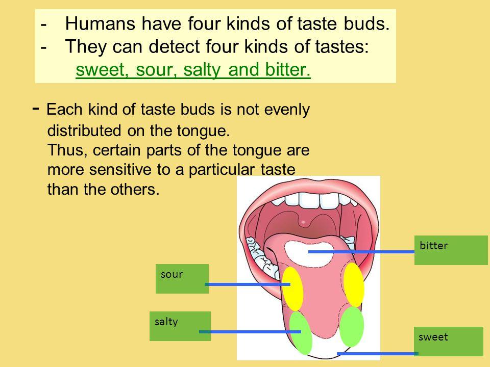 -Humans have four kinds of taste buds.