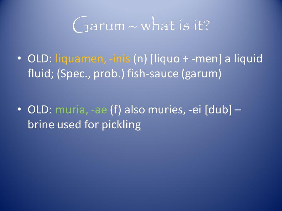 Garum – what is it.
