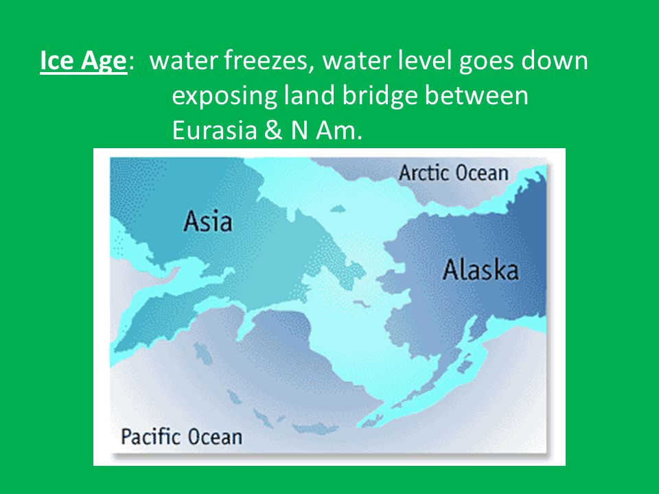 Ice Age: water freezes, water level goes down exposing land bridge between Eurasia & N Am.