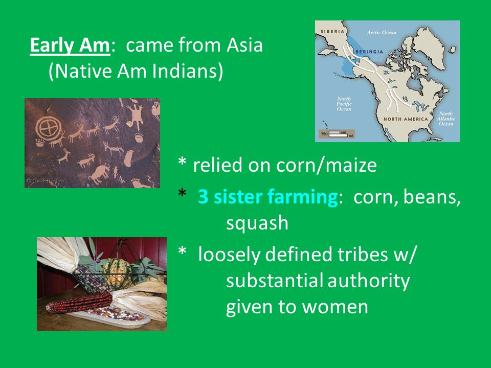 Early Am: came from Asia (Native Am Indians) * relied on corn/maize * 3 sister farming: corn, beans, squash * loosely defined tribes w/ substantial authority given to women