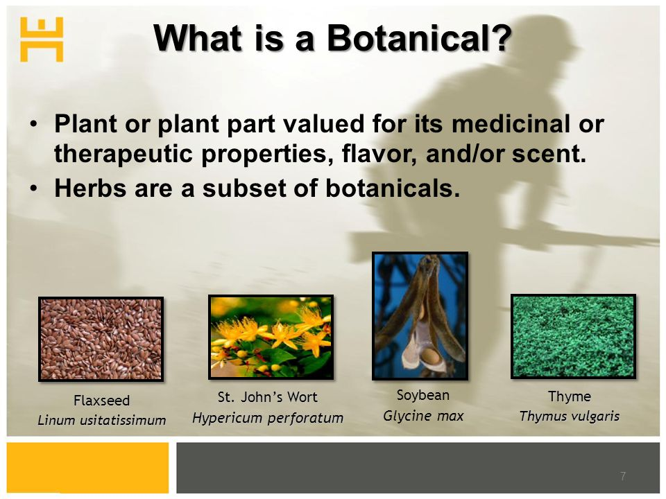 What is a Botanical? Plant or plant part valued for its medicinal or therapeutic properties, flavor, and/or scent. Herbs are a subset of botanicals. 7
