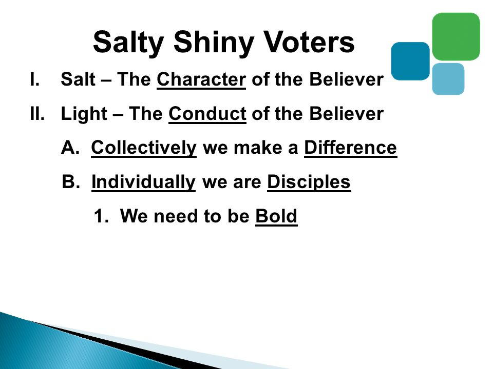 Salty Shiny Voters I.Salt – The Character of the Believer II.Light – The Conduct of the Believer A.