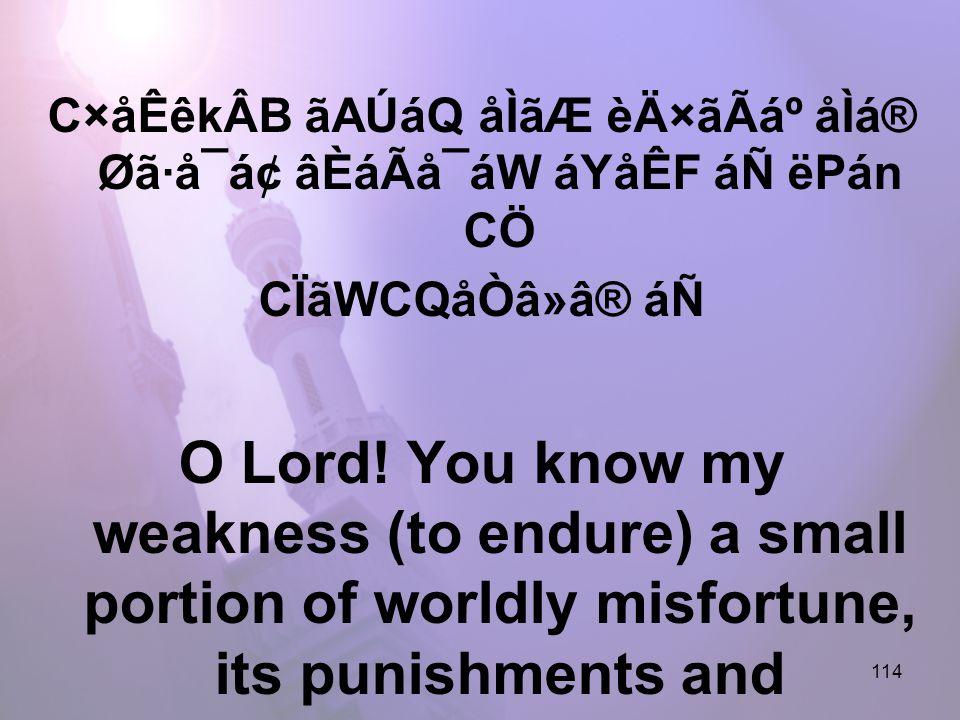 114 C×åÊêkÂB ãAÚáQ åÌãÆ èÄ×ãÃẠåÌá® Øã·å¯á¢ âÈáÃå¯áW áYåÊF áÑ ëPán CÖ CÏãWCQåÒâ»â® áÑ O Lord.