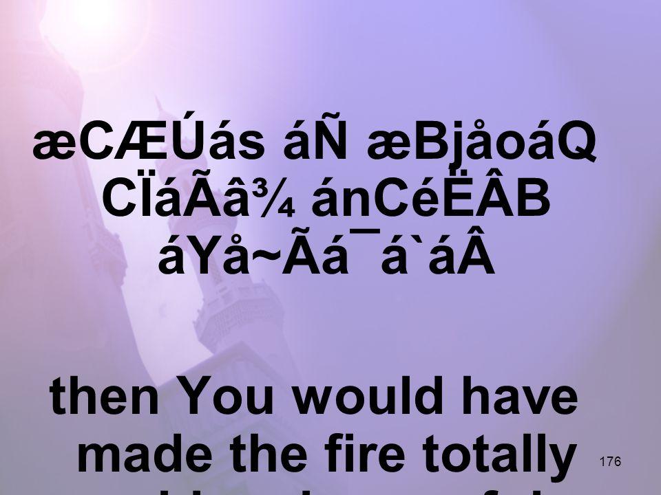 176 æCÆÚás áÑ æBjåoáQ CÏáÃâ¾ ánCéËÂB áYå~Ãá¯á`áthen You would have made the fire totally cold and peaceful,