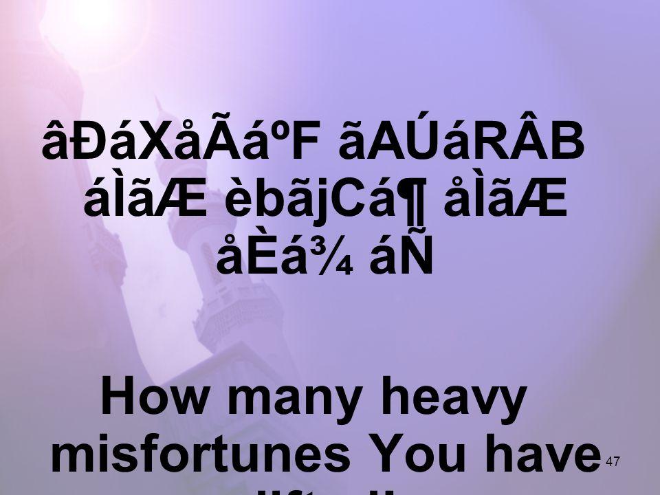 47 âÐáXåÃáºF ãAÚáRÂB áÌãÆ èbãjCᶠåÌãÆ åÈá¾ áÑ How many heavy misfortunes You have lifted!