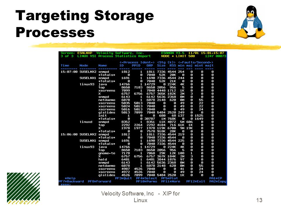 Velocity Software, Inc - XIP for Linux13 Targeting Storage Processes