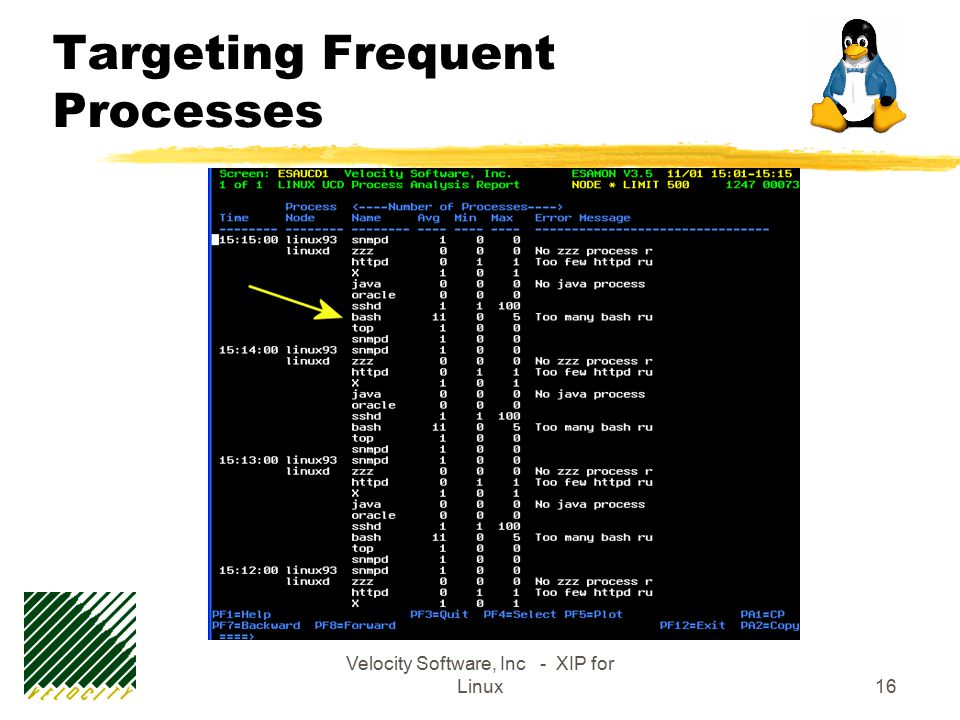 Velocity Software, Inc - XIP for Linux16 Targeting Frequent Processes