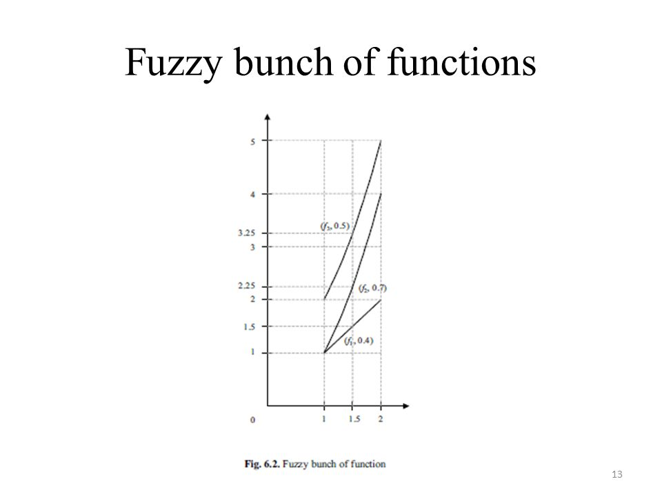 Fuzzy bunch of functions 13