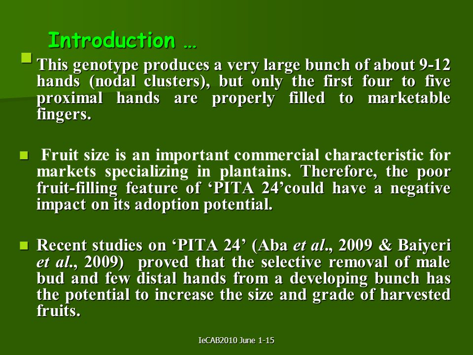 IeCAB2010 June 1-15 Introduction …  This genotype produces a very large bunch of about 9-12 hands (nodal clusters), but only the first four to five proximal hands are properly filled to marketable fingers.