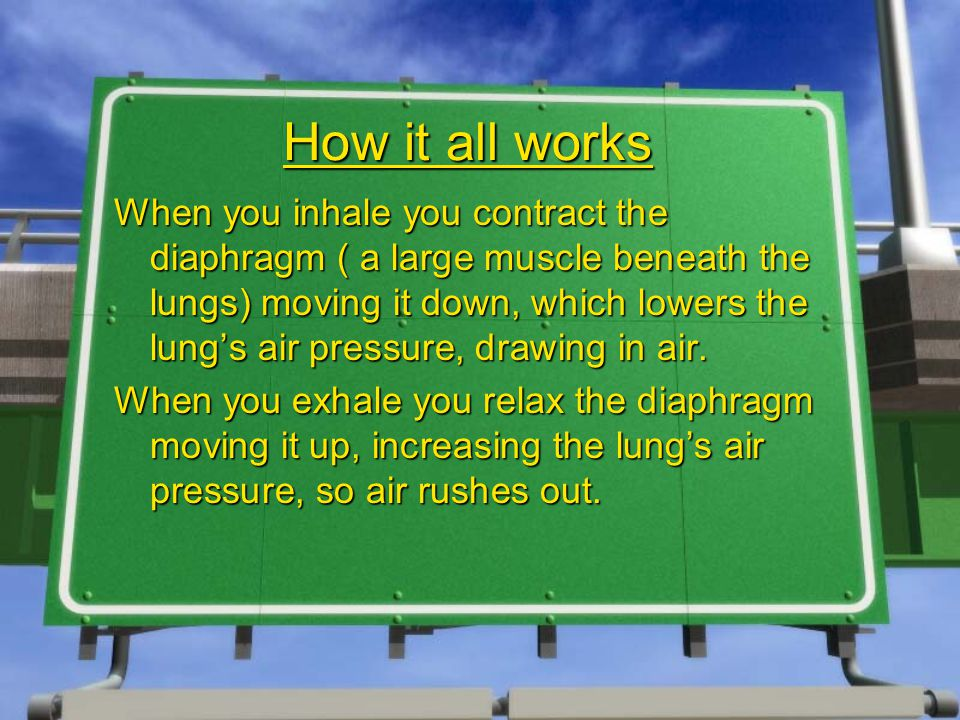 How it all works When you inhale you contract the diaphragm ( a large muscle beneath the lungs) moving it down, which lowers the lung's air pressure, drawing in air.
