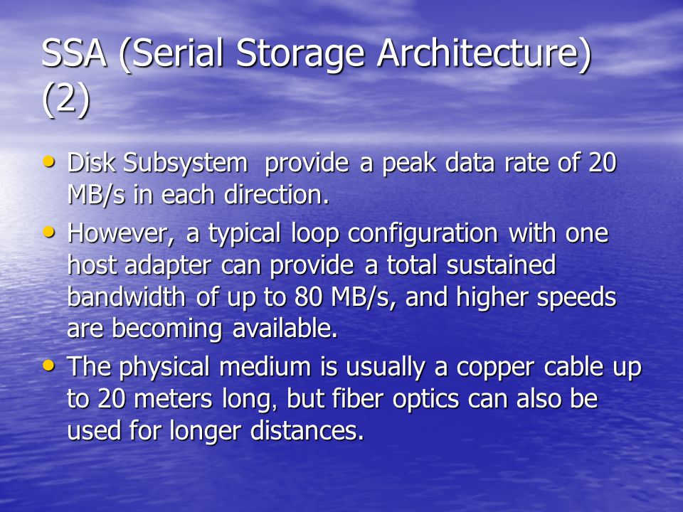 SSA (Serial Storage Architecture) (2) Disk Subsystem provide a peak data rate of 20 MB/s in each direction.