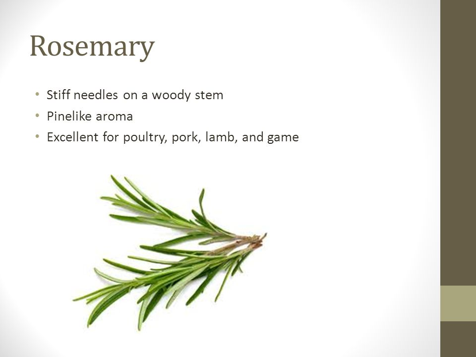 Rosemary Stiff needles on a woody stem Pinelike aroma Excellent for poultry, pork, lamb, and game