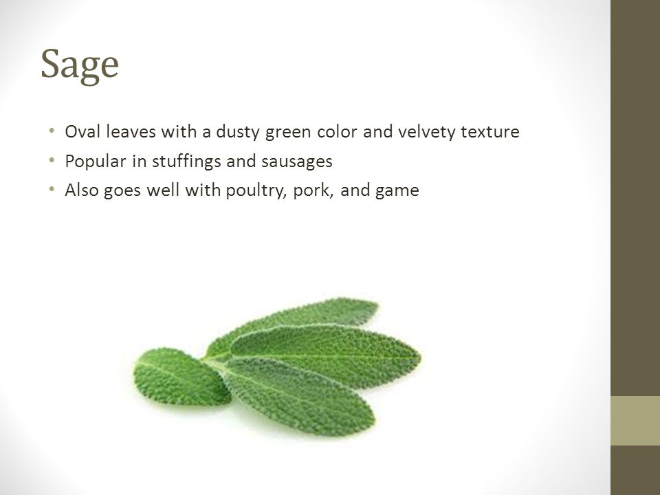 Sage Oval leaves with a dusty green color and velvety texture Popular in stuffings and sausages Also goes well with poultry, pork, and game