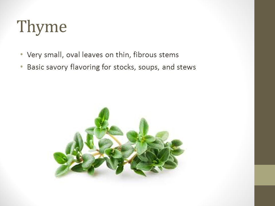 Thyme Very small, oval leaves on thin, fibrous stems Basic savory flavoring for stocks, soups, and stews