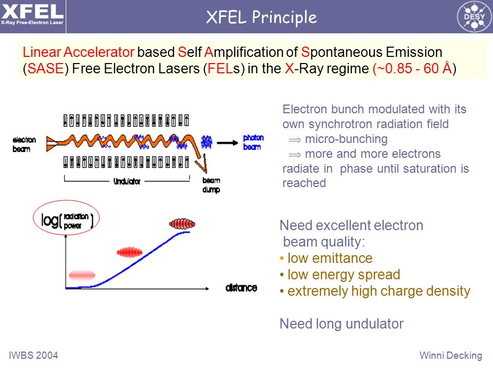 IWBS 2004Winni Decking Linear Accelerator based Self Amplification of Spontaneous Emission (SASE) Free Electron Lasers (FELs) in the X-Ray regime (~0.85 - 60 Å) Need excellent electron beam quality: low emittance low energy spread extremely high charge density Need long undulator Electron bunch modulated with its own synchrotron radiation field  micro-bunching  more and more electrons radiate in phase until saturation is reached XFEL Principle