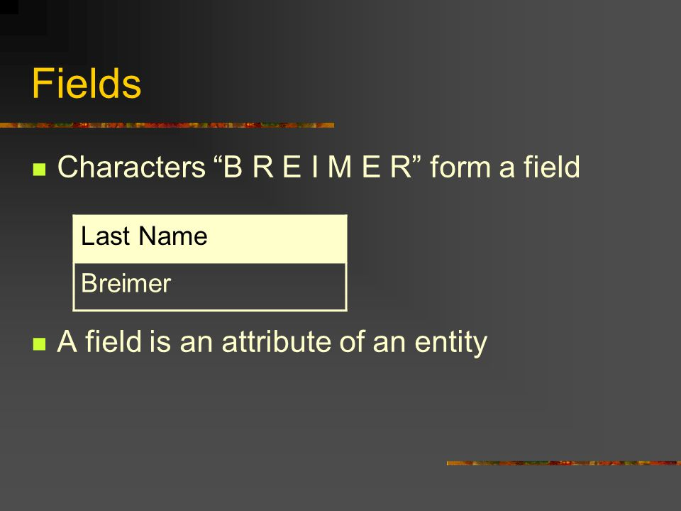 Fields Characters B R E I M E R form a field A field is an attribute of an entity Last Name Breimer