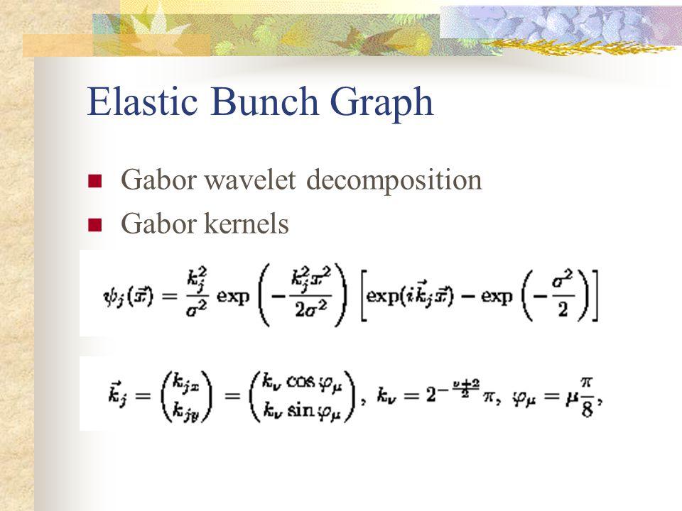 Elastic Bunch Graph Gabor wavelet decomposition Gabor kernels