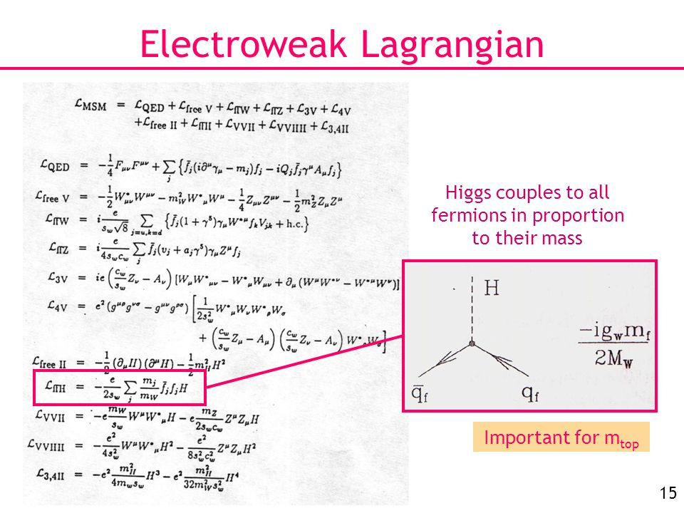 15 Electroweak Lagrangian Higgs couples to all fermions in proportion to their mass Important for m top