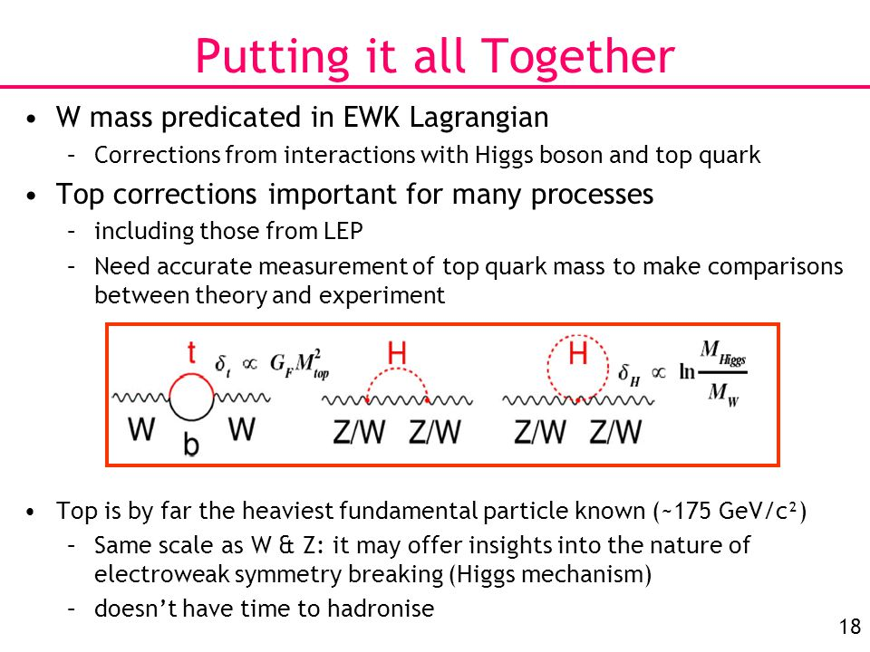 18 Putting it all Together W mass predicated in EWK Lagrangian –Corrections from interactions with Higgs boson and top quark Top corrections important for many processes –including those from LEP –Need accurate measurement of top quark mass to make comparisons between theory and experiment Top is by far the heaviest fundamental particle known (~175 GeV/c²) –Same scale as W & Z: it may offer insights into the nature of electroweak symmetry breaking (Higgs mechanism) –doesn't have time to hadronise