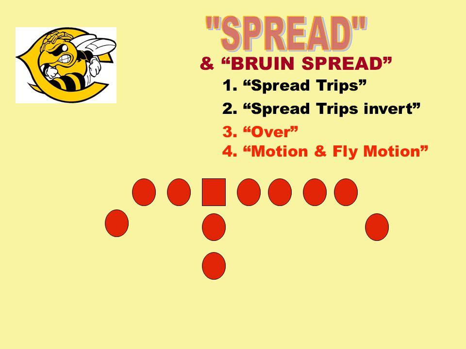 1. Spread Trips 2. Spread Trips invert 3. Over 4. Motion & Fly Motion & BRUIN SPREAD