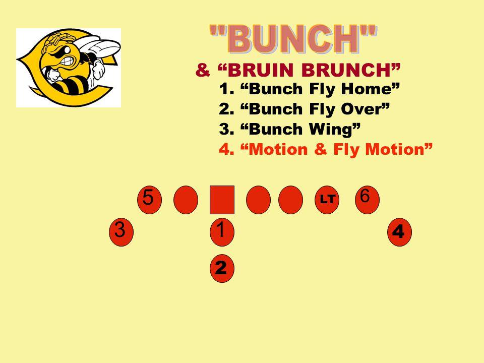 31 & BRUIN BRUNCH 5 2 6 4 LT 1. Bunch Fly Home 4.