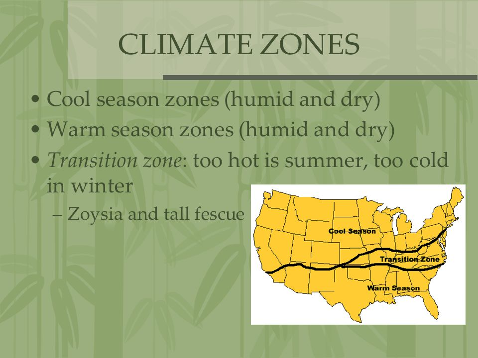 CLIMATE ZONES Cool season zones (humid and dry) Warm season zones (humid and dry) Transition zone: too hot is summer, too cold in winter –Zoysia and t