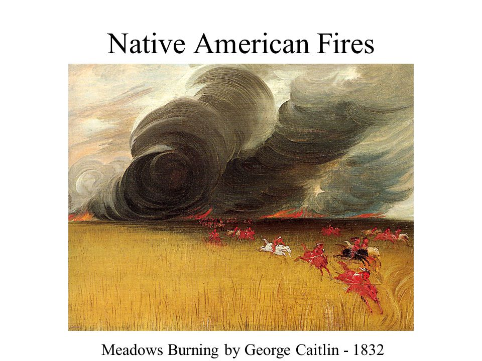 Native American Fires Meadows Burning by George Caitlin - 1832