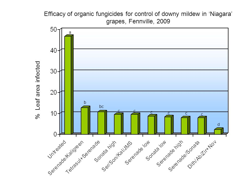 Efficacy of organic fungicides for control of downy mildew in 'Niagara' grapes, Fennville, 2009 % Leaf area infected a b c bc d c c c c c
