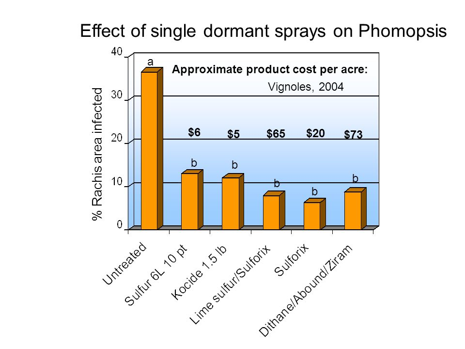 % Rachis area infected a b b b b Approximate product cost per acre: $5 $65 $6 $73 b $20 Vignoles, 2004 Effect of single dormant sprays on Phomopsis