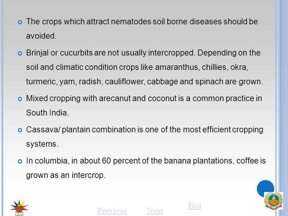 The crops which attract nematodes soil borne diseases should be avoided.