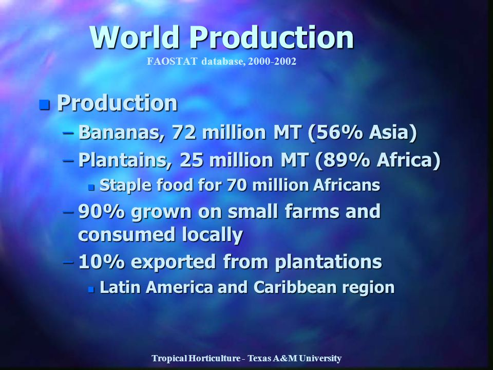 Tropical Horticulture - Texas A&M University World Production World Production FAOSTAT database, 2000-2002 n Production –Bananas, 72 million MT (56% A