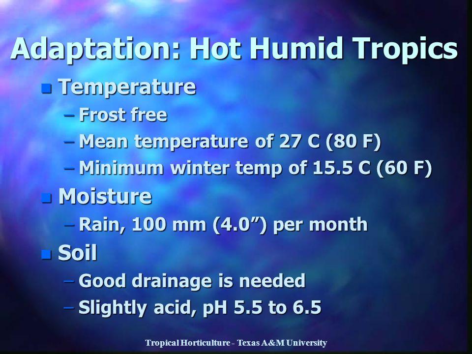 Tropical Horticulture - Texas A&M University Adaptation: Hot Humid Tropics n Temperature –Frost free –Mean temperature of 27 C (80 F) –Minimum winter