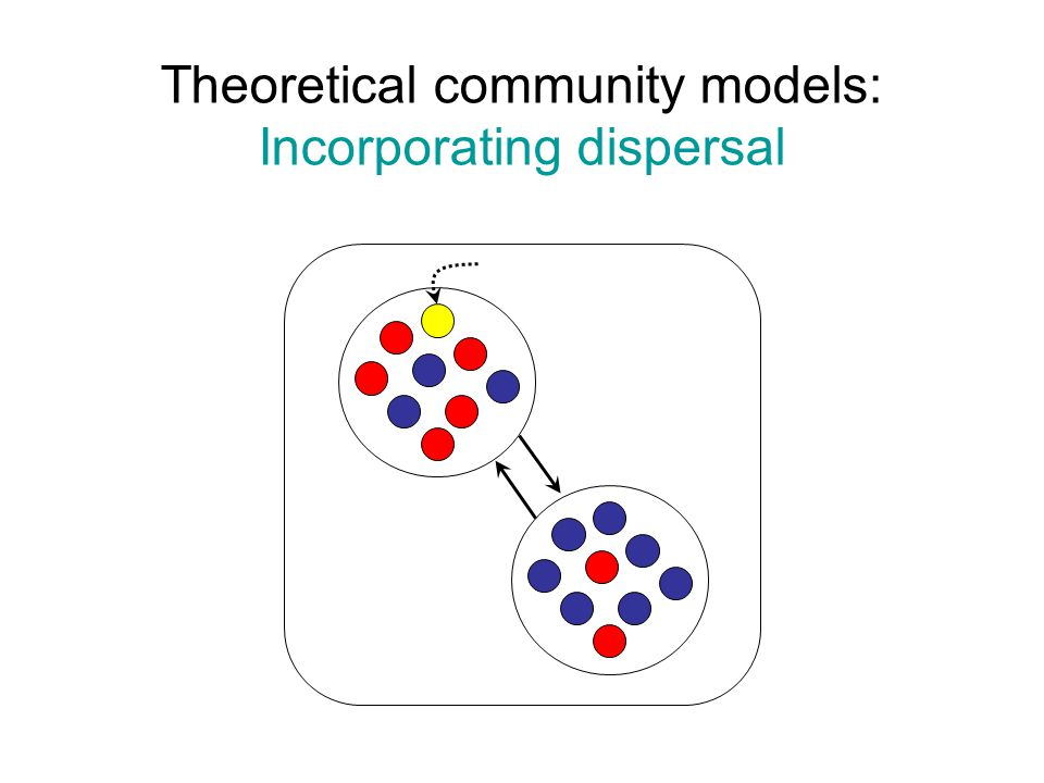 Community consequences of dispersal Dispersal brings new species Dispersal allows persistence in unsuitable habitat ( sinks ) Dispersal can counteract (or reinforce) local selection Dispersal can counteract drift (flipside: limited dispersal allows communities to drift apart) If dispersal ability is negatively correlated with competitive ability (i.e., there is a tradeoff) across species, stable coexistence can be maintained