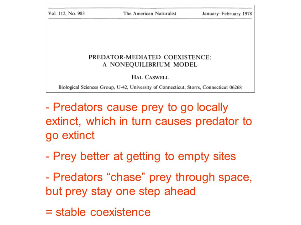 - Predators cause prey to go locally extinct, which in turn causes predator to go extinct - Prey better at getting to empty sites - Predators chase prey through space, but prey stay one step ahead = stable coexistence