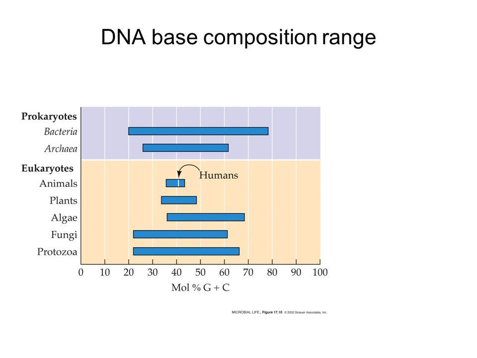 DNA base composition range