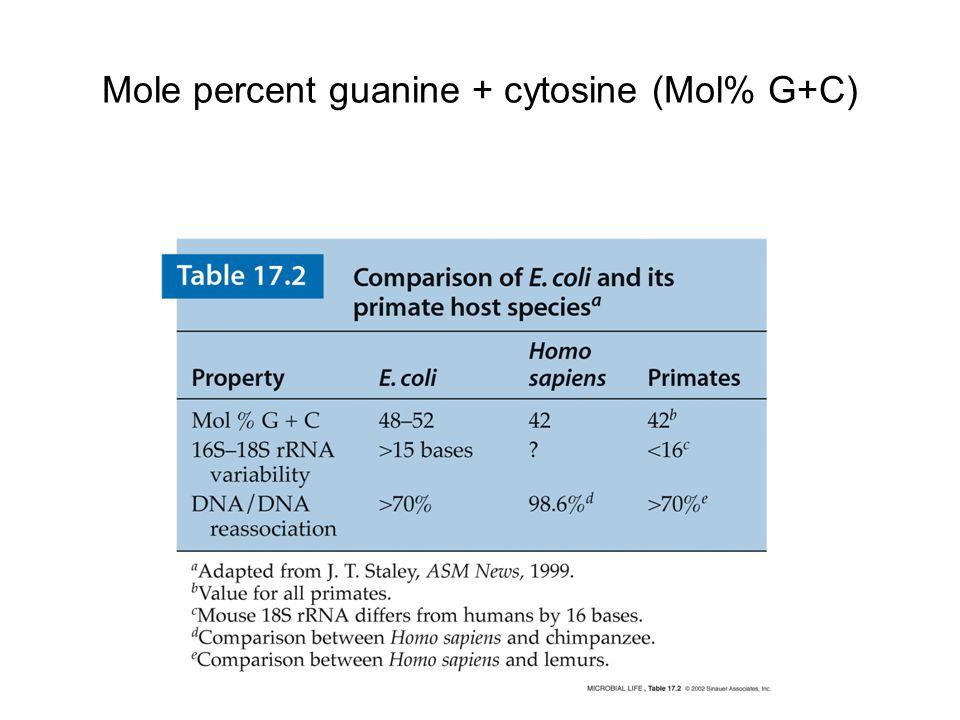 Mole percent guanine + cytosine (Mol% G+C)