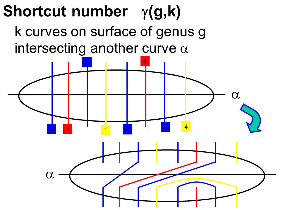 Shortcut number  (g,k) k curves on surface of genus g intersecting another curve    1 4 1 4 1 3 8 6