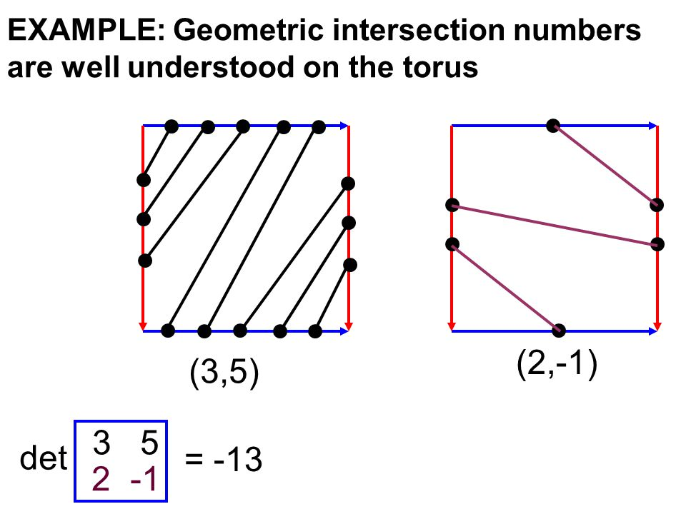 EXAMPLE: Geometric intersection numbers are well understood on the torus (3,5) (2,-1) 3 5 2 -1 det = -13