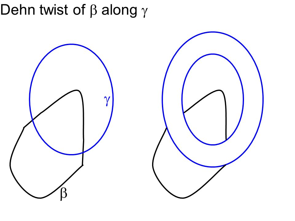 Dehn twist of  along   