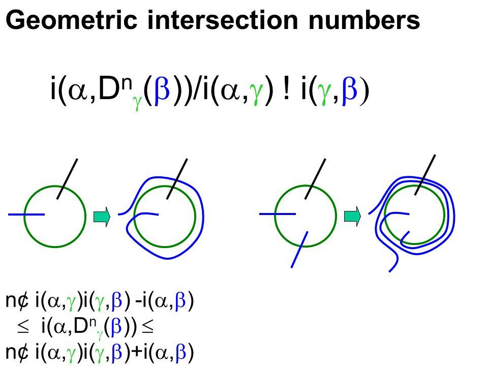 Geometric intersection numbers n¢ i( ,  )i( ,  ) -i( ,  )  i( ,D n  (  ))  n¢ i( ,  )i( ,  )+i( ,  ) i( ,D n  (  ))/i( ,  ) .