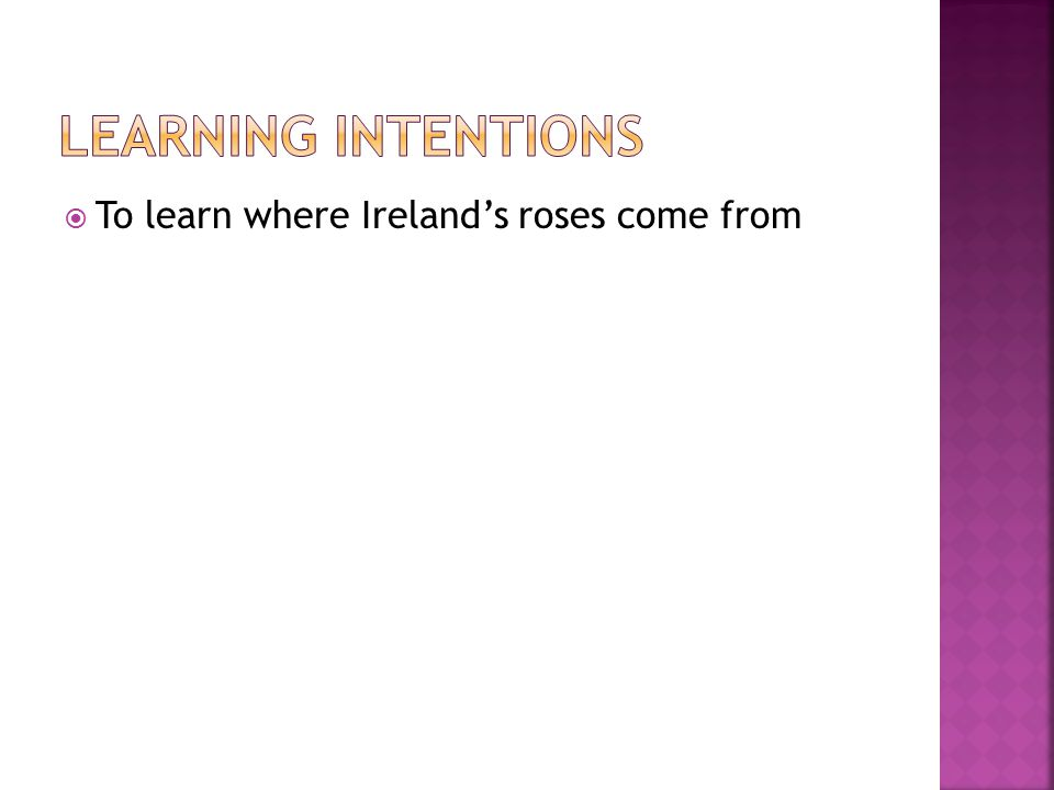  To learn where Ireland's roses come from