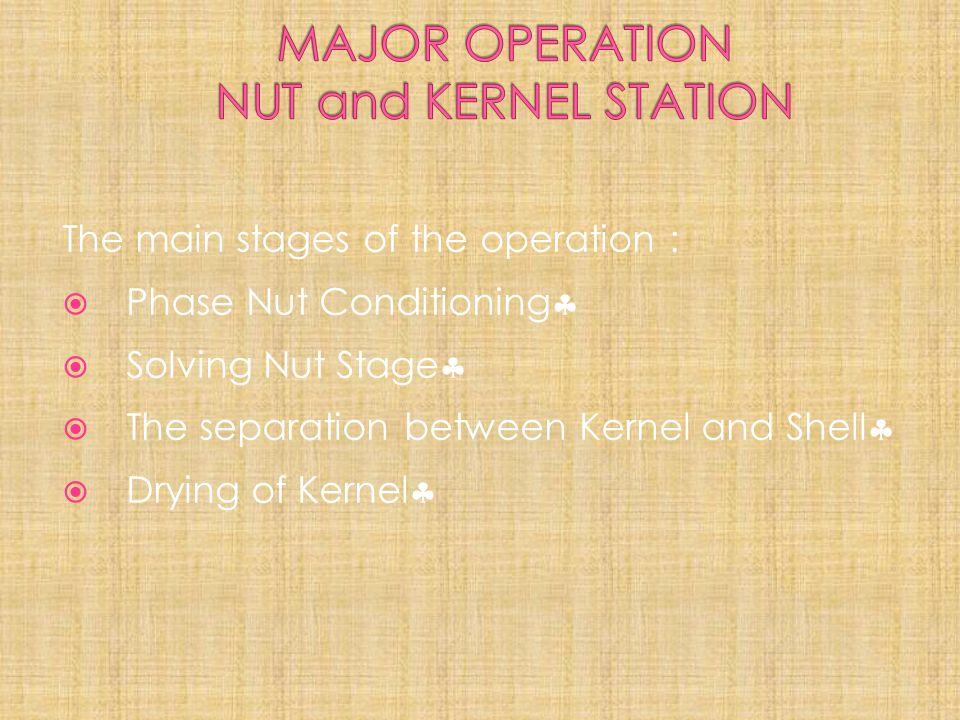 The main stages of the operation :  Phase Nut Conditioning   Solving Nut Stage   The separation between Kernel and Shell   Drying of Kernel 