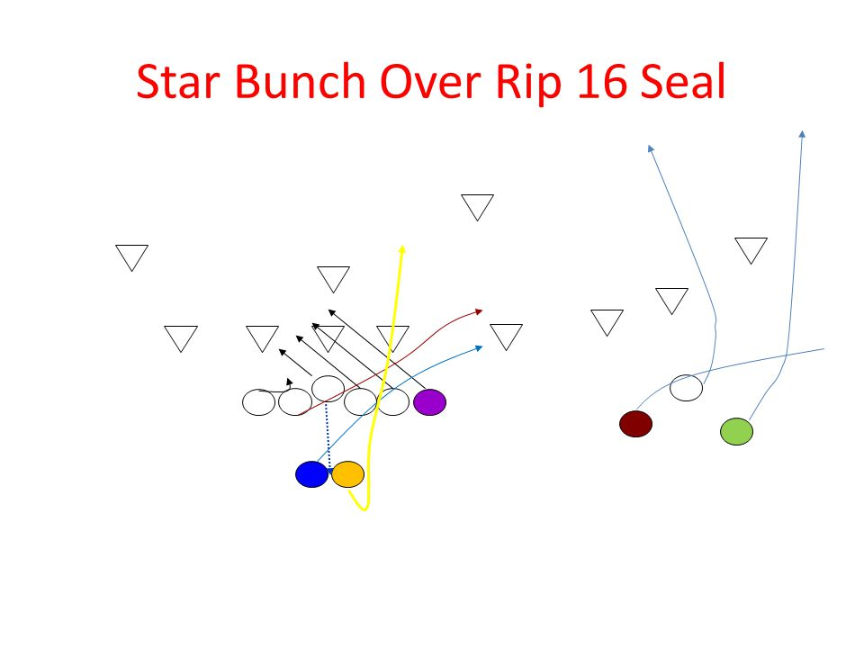 Star Bunch Over Rip 16 Seal
